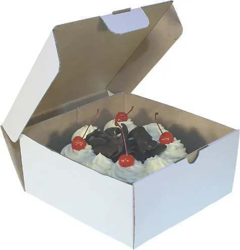 food packaging christchurch